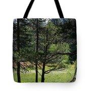 Bluff Lake Ca Through The Trees 8 Tote Bag