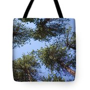 Bluff Lake Forest 2 Tote Bag