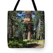 Bluff Lake Forest 6 Tote Bag