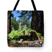 Bluff Lake Forest Foliage1 Tote Bag