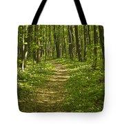 Bluff Trail Awenda Provincial Park Tote Bag