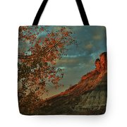Bluffs Along The Saline River North Of Russell, Kansas. Tote Bag