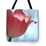 Blush Tote Bag