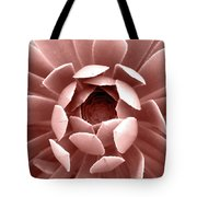 Blush Pink Succulent Plant, Cactus Close Up Tote Bag
