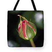 Blushing Rose Bud Tote Bag