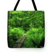 Boardwalk On The Ma At 2 Tote Bag