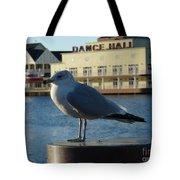 Boardwalk Seagull Tote Bag
