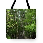 Boardwalk Through The Bald Cypress Strand Tote Bag