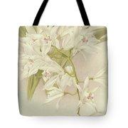 Boat Orchid  Cymbidium Tote Bag