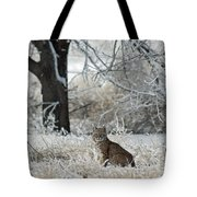 Bobcat And Heavy Frost Tote Bag