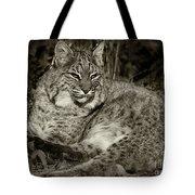 Bobcat In Black And White Tote Bag