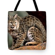 Bobcat Just Relaxin' Tote Bag