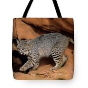 Bobcat Makes Its Move Tote Bag