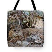 Bobcat Resting Tote Bag