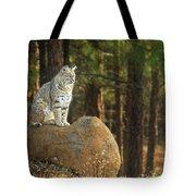 Bobcat Thoughts Tote Bag