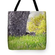 Bobcat Watch Tote Bag