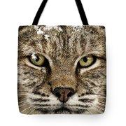 Bobcat Whiskers Tote Bag