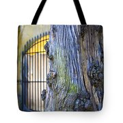 Boboli Garden Ancient Tree Tote Bag
