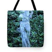 Boboli Gardens, Florence Tote Bag