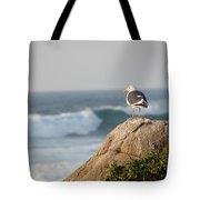 California Gull 2 - Bodega Head Sentinel  Tote Bag