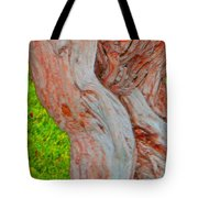 Bodies And Muscles Tote Bag