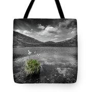 Bog Cotton On Blue Lough Tote Bag