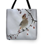 Bohemian In Vermont Tote Bag