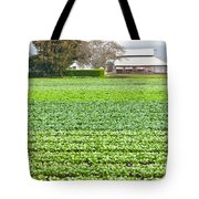 Bok Choy Field And Farm Tote Bag