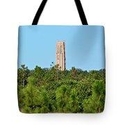Bok Tower In December Tote Bag