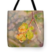 Bokeh - Sunlight On Brambles And Cobwebs Tote Bag