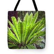 Bold Fronds 8 Tote Bag