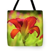 Bold Red Gold - Daylily Tote Bag
