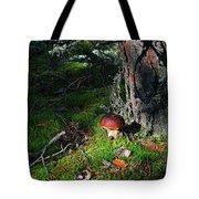 Boletus Mushroom Tote Bag