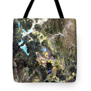 Bolivian Andes From Space Tote Bag