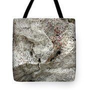 Bonaire Coral And Shells 1 Tote Bag