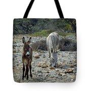Bonaire Wild Donkeys 2 Tote Bag
