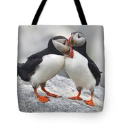 Bonded And Banded Tote Bag