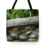 Bonding Box Turtles Tote Bag