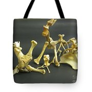 Bone Creatures One Tote Bag