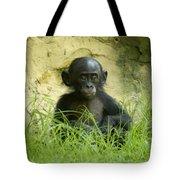Bonobo Tyke Tote Bag