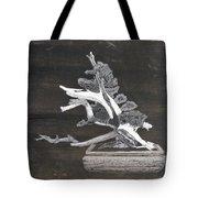 Bonsai #4 Tote Bag by Richard Le Page