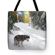 Boofies Great Adventure Tote Bag
