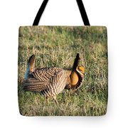 Booming Greater Prairie Chicken 5 Tote Bag