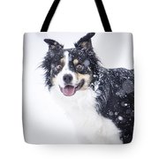 Border Collie In The Snow Tote Bag