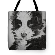 Surprised Border Collie Puppy Tote Bag