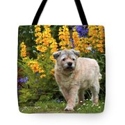 Border Guard Tote Bag