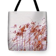 Born Of The Light Tote Bag
