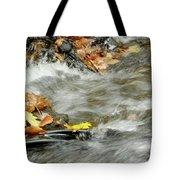 Boscobel Stream Tote Bag