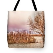 Bosque Winter II Tote Bag