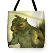 Bossy Squirrel Tote Bag